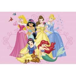 Princessas da Disney