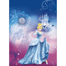 Cinderella Night da Disney
