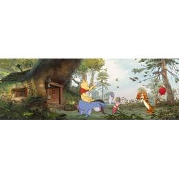Pooh in House da Disney