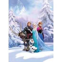 Frozen Winter Land