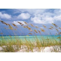 Fotomural Papel de Parede Ocean Breeze