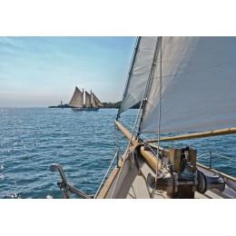 Fotomural Papel de Parede Sailing