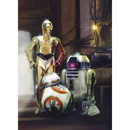 Mural Papel de Parede Star Wars Three Droids
