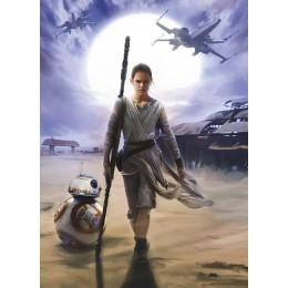 Mural Papel de Parede Star Wars Rey
